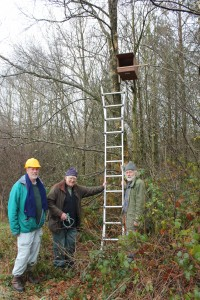 Richard, Mike and Steve with the Denmark Farm Kestrel Box