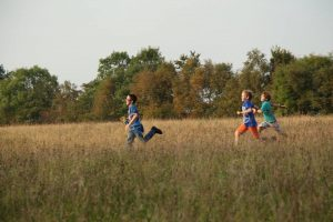 Our meadows are habitats for people as well as wildlife