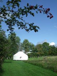 Eco Campsite
