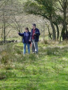 Field survey techniques