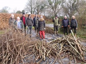 WWYL coppicing workshop