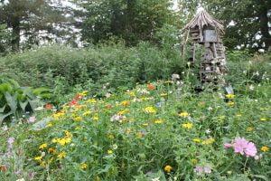 ornamental gardening