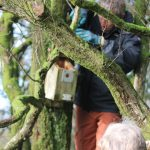Monitoring bird box