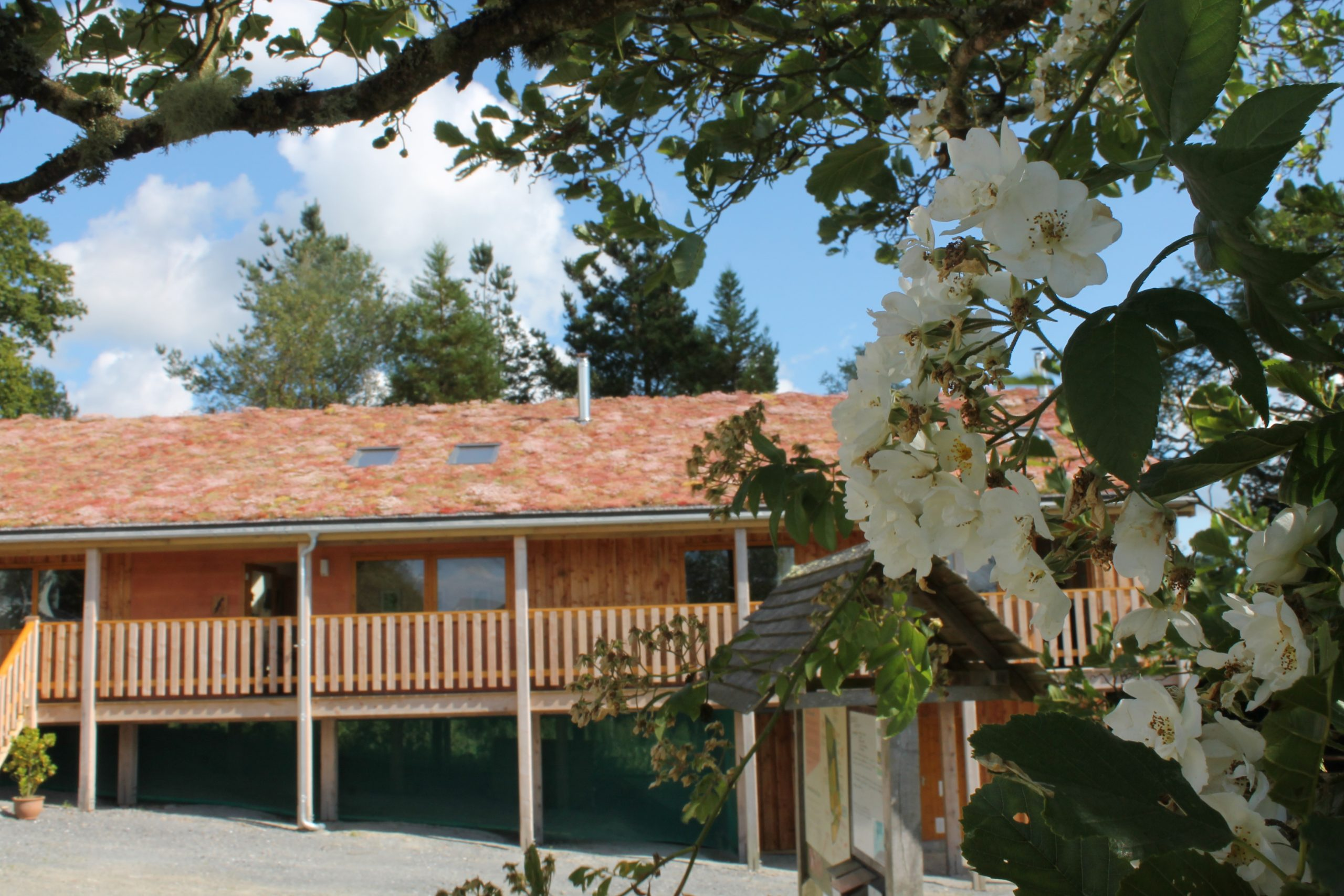 self catering holidays Wales