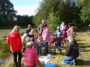 Pond dipping at Llanilar