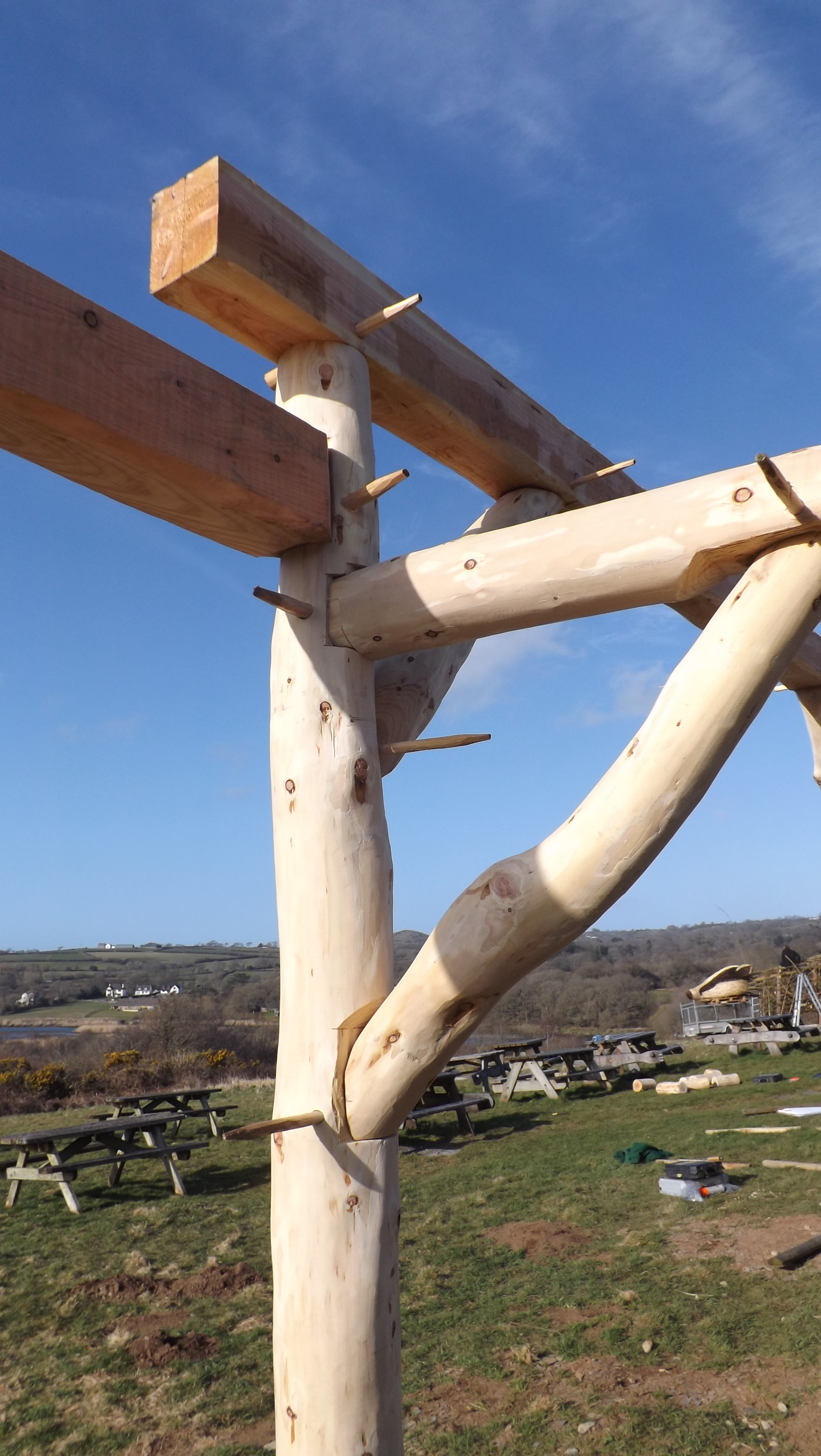 Tree To Frame 5 Day Roundwood Timber Framing Fully