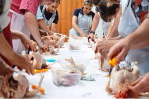 poultry despatch