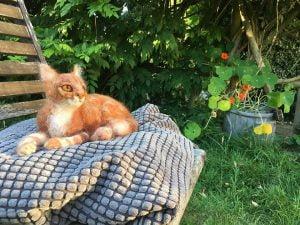 needle-felt cats dogs