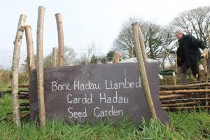 Lampeter Seed Library Garden