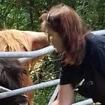 Linda Highland Cattle